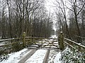 Gated track into Little Goosehill Wood - geograph.org.uk - 1160311.jpg