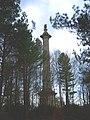 Gibside Column to Liberty pic 2.JPG