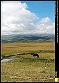 Gonghe, Hainan, Qinghai, China - panoramio - neverdance (23).jpg