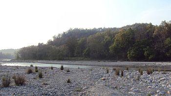 Gorge of Alligators.jpg