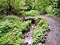 Gower Hey Brook Culvert - geograph.org.uk - 1317168.jpg