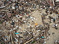 Granulés plastiques industriels sur une plage de la côte Aquitaine.JPG