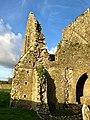 Graveyard, Hore Abbey, Caiseal, Éire - 45671475115.jpg