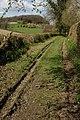 Green lane near Little Woolpits, Ledbury - geograph.org.uk - 753492.jpg