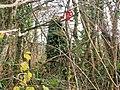 Greenacre Ruins, Llanteg - geograph.org.uk - 1051182.jpg