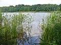Grosser Lienewitzsee (Great Lienewitz Lake) - geo.hlipp.de - 39307.jpg