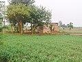 Guma di Motor, Rolu Majra, Rupnagar, Punjab, 140102, India - panoramio.jpg