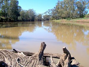 Gwydir River - Gwydir River, near Moree