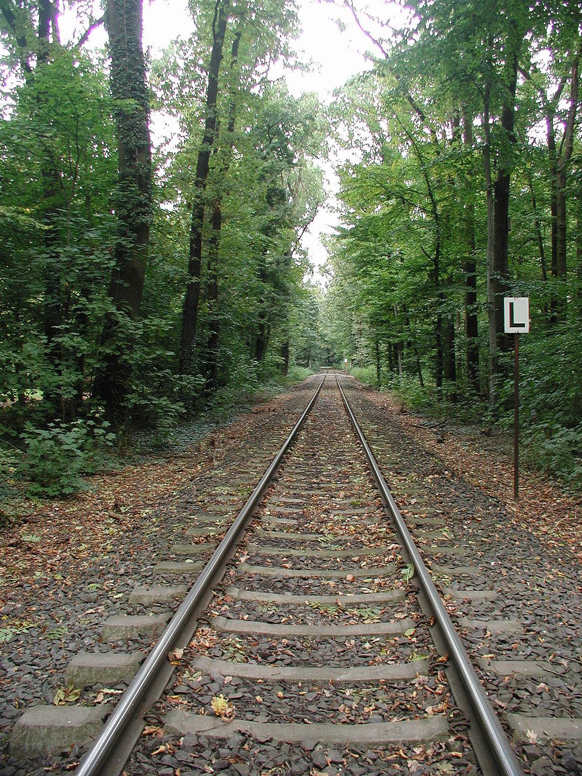 Binario ferroviario wikipedia for Come leggere la costruzione di progetti