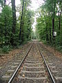 HGK-Trasse-Kölner-Stadtwald-002.JPG
