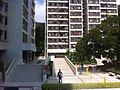 HK Pok Fu Lam 置富道 Chi Fu Road 置富花園 Chi Fu Fa Yuen ground floor garden Mar-2012.jpg