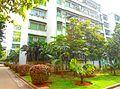 Hainan University - 13.jpg