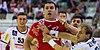 Handball-WM-Qualifikation AUT-BLR 060.jpg