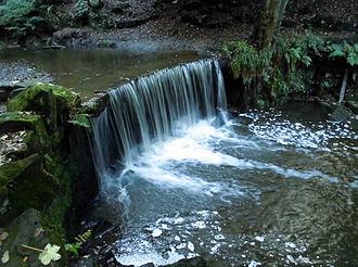 River Trent - The Trent passes over a man-made waterfall in Hollin Wood just downstream from its source.