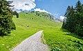 Hiking path in Samoens.jpg