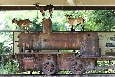 Historic locomotive hosting goats in Don Khon,Laos