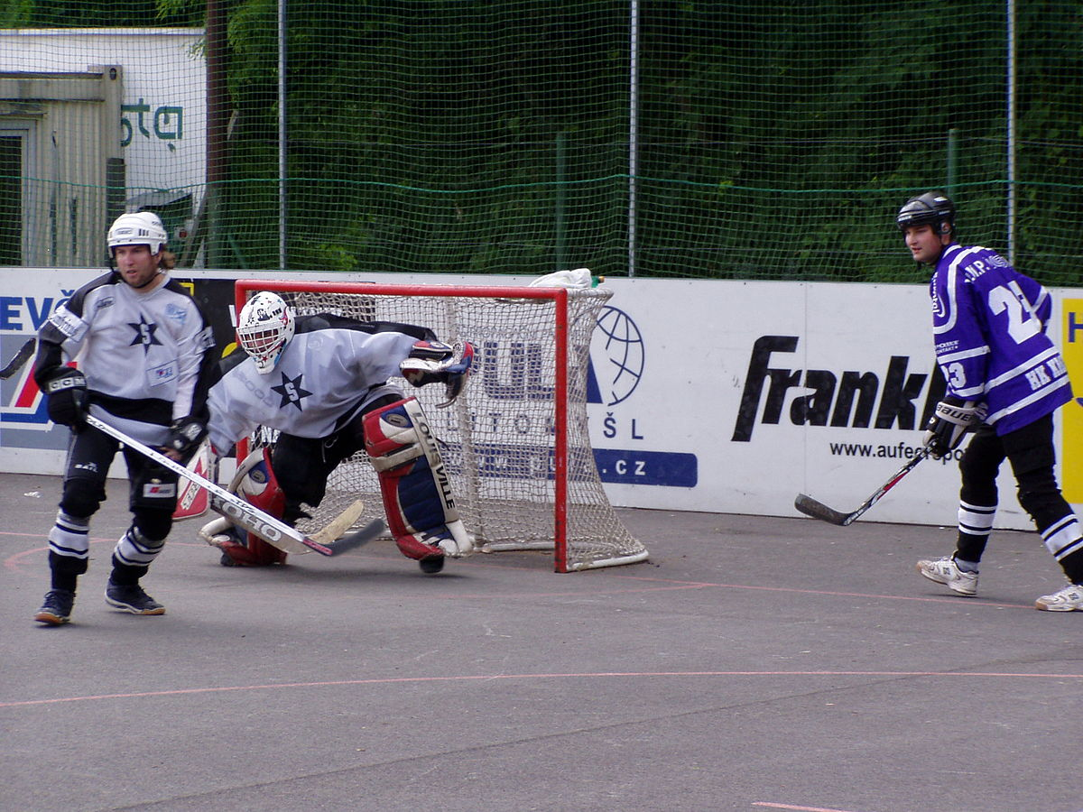 Hokejbal Wikip 233 Dia