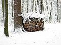 Holzstapel im Winterwald.jpg