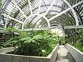 Hong Kong Botanical Gardens - IMG 9665.JPG