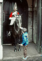 Horse Guard at Whitehall.jpg