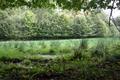 Hosenfeld Himmelsberg SCI 555520801 Pasture Fagus Swamp River source.png