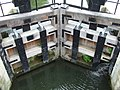 Houghton Lock Gates - geograph.org.uk - 546099.jpg