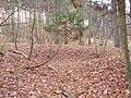 Huegelgrab-heilbronn.jpg