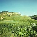 Hundred hills (1980). (11622719945).jpg