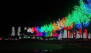 I-City - I-City Park at night