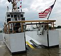 Ibis patrols the Potomac -d.jpg