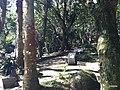 Iguape - SP - panoramio (291).jpg