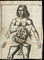 Illustration of woman in utero Wellcome L0051871.jpg