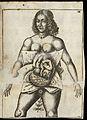 Illustration of woman in utero Wellcome L0051871.jpg