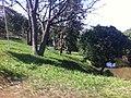 Indaiatuba - SP - panoramio (73).jpg