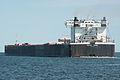 Indiana Harbor (ship, 1979) 001.jpg