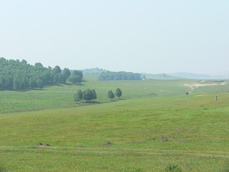 File:Inner Mongolia grassland (2005).jpg