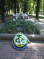 Ivano-Frankivsk UGA troopers mass grave-1.JPG