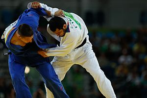 Azerbaijan at the 2016 Summer Olympics - Elmar Gasimov fought against Czech Republic's Lukáš Krpálek in the men's 100 kg final.