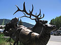 Jackson Hole Visitor Center exterior.jpg
