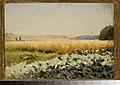 Jan Stanisławski - Field of cabbage - MP 4781 - National Museum in Warsaw.jpg