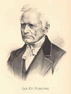 Jan Vilímek - Jan Evangelista Purkyně.jpg