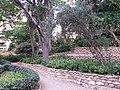 Jardín de Monforte 83.jpg