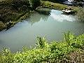 Jazierko pri odpočivadle - panoramio.jpg