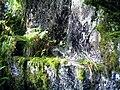 June Grüne Hölle Bergwälder Granitfelsen Glottertal - Mythos Black Forest Photography 2013 green mountain forest - Granit Rocks - panoramio.jpg