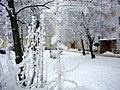 KALISZ W BIELI 04 - panoramio.jpg