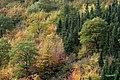 KHAZAN ABASABAD-BEHSHAHR - panoramio.jpg