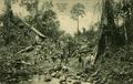 KITLV - 1405451 - Kleingrothe, C.J. - Medan - Making a new road - circa 1900.tif