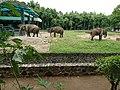 Kandang Gajah Borobudur.jpg