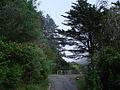 Karori Trail - Flickr - Teacher Traveler.jpg