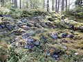Kastrudborgen IV.jpg